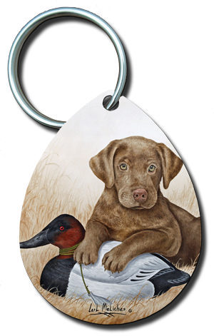 003_chocolatelabpuppyw-canvasbackdecoy.LAND