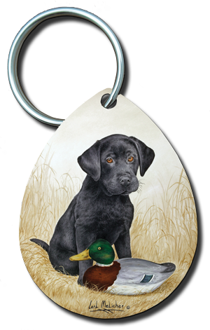042_blacklabpuppyw-1887deocy